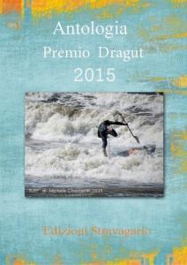 copertina antologia 2015